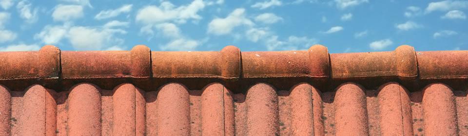 nokvorst dak
